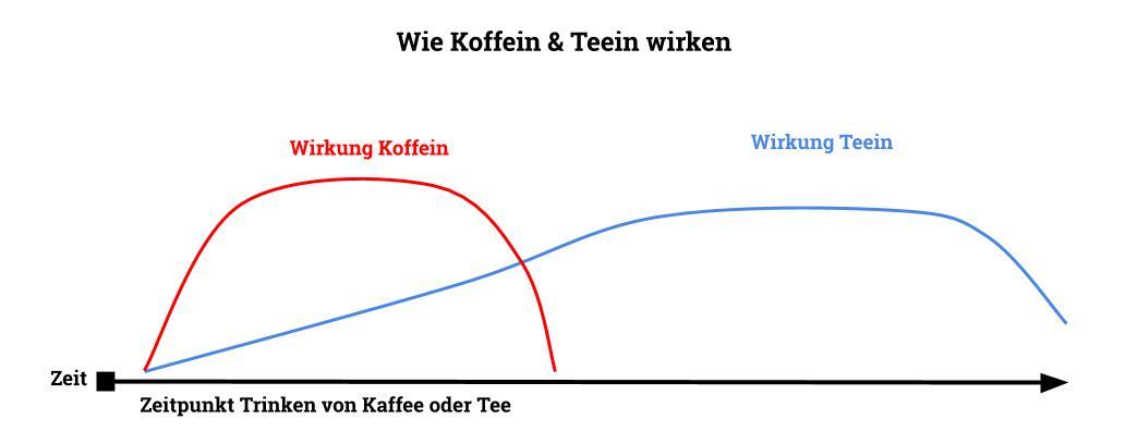 Wie Koffein & Teein wirken